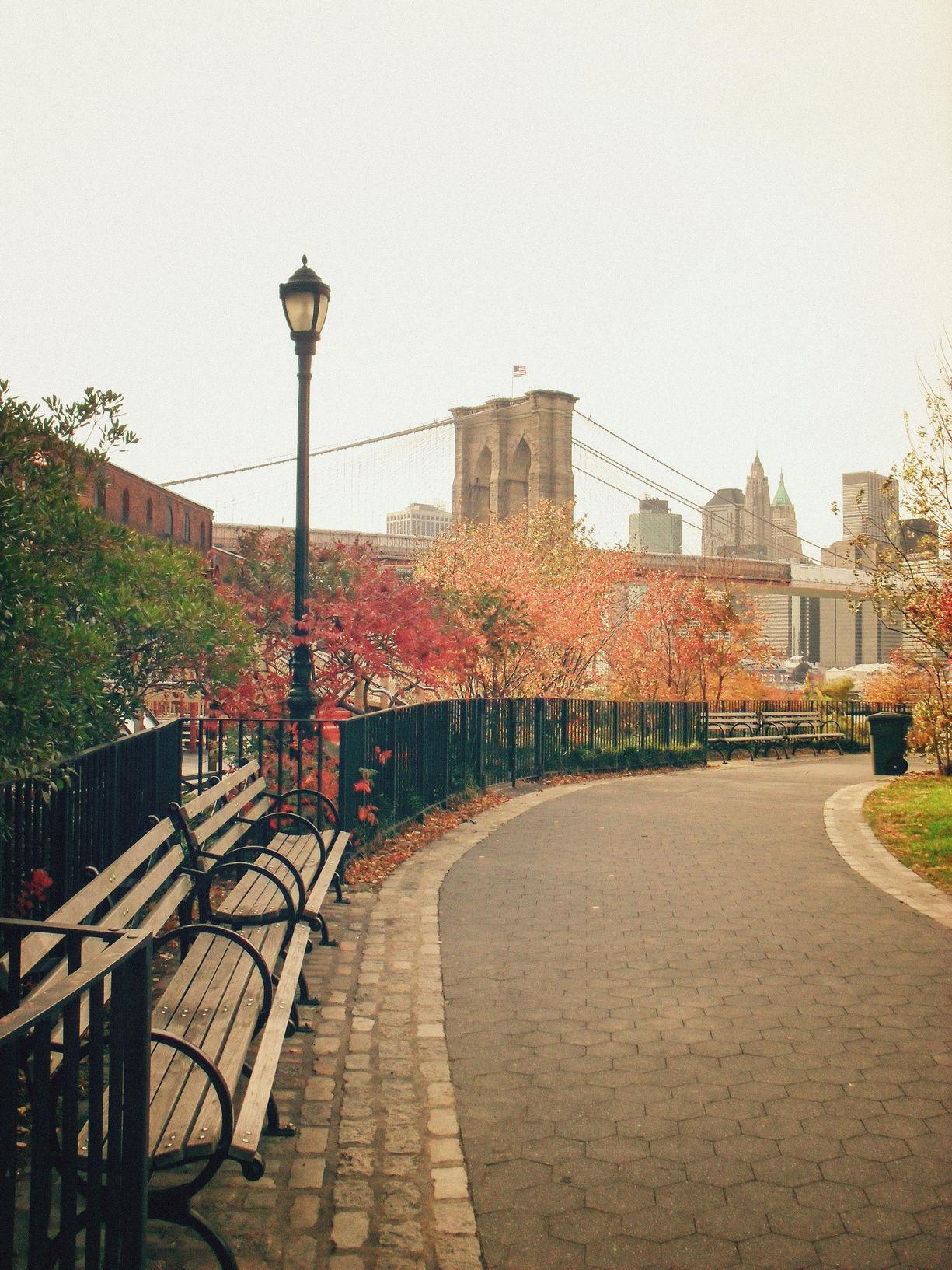 Autumn - New York City